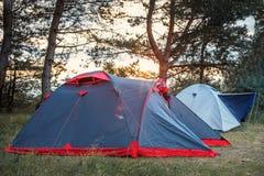 在一块沼地的帐篷在日落光芒的森林里  库存照片