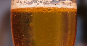 在一块玻璃的冷光啤酒用水滴下 工艺自转的啤酒关闭 股票视频