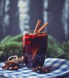 在一块玻璃的圣诞节热的被仔细考虑的酒用香料和柑桔 被仔细考虑的酒用桂香、茴香和桔子 免版税库存图片