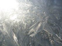 在一块玻璃的弗罗斯特样式在冬天 库存照片
