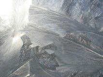 在一块玻璃的弗罗斯特样式在冷的冬日 库存图片