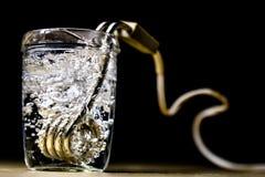 在一块玻璃的热化水在芥末以后 brewin老方法  免版税图库摄影