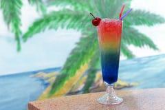 在一块玻璃的美丽的鲜美五颜六色的饮料鸡尾酒用汁液 图库摄影