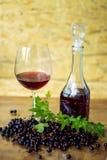 在一块玻璃的自创酒用黑当前莓果 免版税库存图片