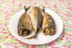 在一块白色板材的三条被烘烤的鱼 健康食物,海鲜 鲭鱼 图库摄影