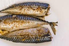 在一块白色板材的三条被烘烤的鱼 健康食物,海鲜 鲭鱼 库存图片