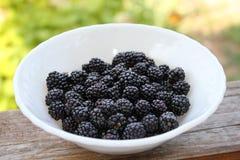 在一块白色板材的成熟和水多的黑莓在绿色背景 板材有用的黑莓在村庄 库存照片