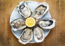 在一块白色板材的新鲜的牡蛎有冰和柠檬的 图库摄影