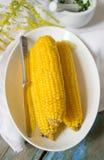 在一块白色板材的煮沸的玉米 免版税库存图片
