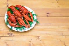 在一块白色板材的煮沸的红色小龙虾用在木背景的绿色茴香 免版税图库摄影