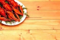 在一块白色板材的煮沸的红色小龙虾用在木背景的绿色茴香 库存照片