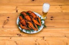 在一块白色板材的煮沸的红色小龙虾用在木背景的绿色茴香 免版税库存图片