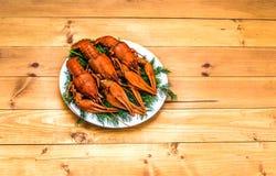 在一块白色板材的煮沸的红色小龙虾用在木背景的绿色茴香 免版税库存照片