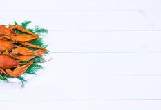 在一块白色板材的煮沸的红色小龙虾用在白色木背景的绿色茴香 免版税图库摄影