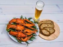 在一块白色板材的煮沸的红色小龙虾用在白色木背景的绿色茴香 库存图片