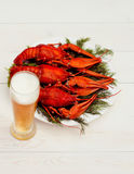 在一块白色板材的煮沸的红色小龙虾用在白色木背景的绿色茴香 免版税库存照片