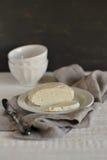 在一块白色板材的自创乳酪 库存图片