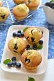 在一块白色板材的蓝莓松饼 图库摄影