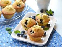 在一块白色板材的蓝莓松饼 库存图片