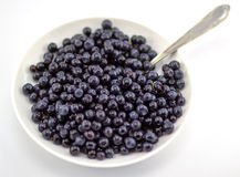 在一块白色板材的蓝莓 免版税库存图片