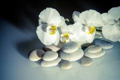 在一块白色玻璃的平的石头 免版税库存照片