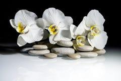 在一块白色玻璃的平的石头 免版税库存图片
