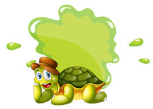 在一块空的模板的底部的一只乌龟 免版税库存照片
