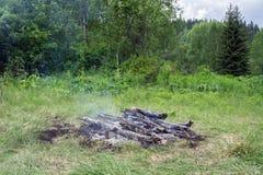 在一块绿色沼地的被烧的篝火,在森林中 免版税库存照片