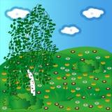 在一块花卉沼地的绿色桦树 免版税库存照片