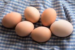 在一块蓝色和白色布料的熟蛋 免版税库存照片