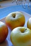 在一块陶瓷板材的苹果在画象特写镜头 免版税库存图片