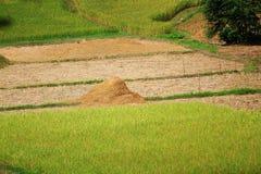 在一块麦田的干草堆秸杆在收获,乡下风景以后 免版税库存图片