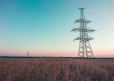 在一块麦田的输电线在日出期间 免版税库存照片