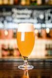 在一块玻璃的未过滤的啤酒在酒吧 免版税库存图片