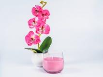 在一块玻璃的桃红色蜡烛与在白色背景隔绝的兰花 图库摄影