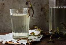 在一块玻璃的桦树自然戒毒所汁液在白桦树皮和与桦树分支 背景几何老装饰品纸张葡萄酒 生锈的金属 免版税图库摄影
