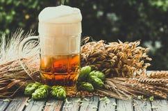 在一块玻璃的淡泡沫似的啤酒在自然本底 库存图片