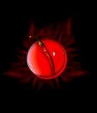在一块玻璃的红辣椒与红色液体 库存图片