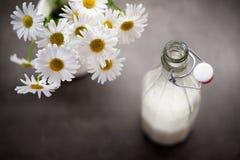 在一块玻璃的自创椰奶在春白菊旁边 库存图片