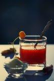 在一块玻璃的西红柿汁与盐和苹果在清早 免版税库存图片