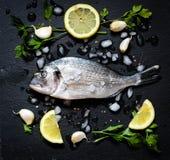 在一块黑石头的鲜鱼Orata与菜 库存图片