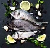 在一块黑石头的鲜鱼Orata与菜 免版税图库摄影