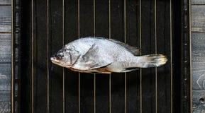 在一块黑石头的鲜鱼Orata与菜 库存照片