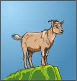 在一块绿色石头的山羊 免版税库存照片
