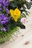 在一块绿色玻璃的春天花的构成和草在与可看见的五谷的轻的木背景滚保龄球 免版税库存照片