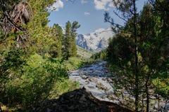 在一堆山河以后 Altai,西伯利亚 免版税库存照片