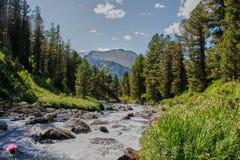 在一堆山河以后 Altai,西伯利亚 免版税库存图片