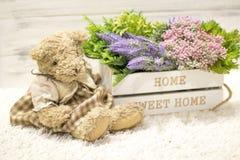 在一头木箱和逗人喜爱的熊的花 在一个白色木箱,长毛绒葡萄酒的花负担 浪漫礼品 免版税图库摄影