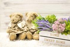 在一头木箱和逗人喜爱的熊的花 在一个白色木箱,长毛绒葡萄酒的花负担 浪漫礼品 库存照片