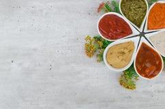在一套的顶视图与拷贝地方和新鲜的草本的鲜美调味汁 免版税图库摄影